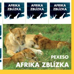 pexeso_afrika-1