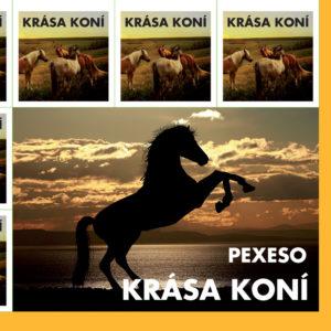 pexeso_kone-1