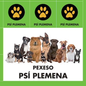 pexeso_psi-plemena-1